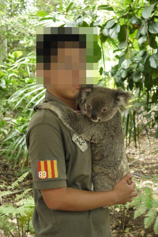 澳洲-布里斯本-龍柏動物園