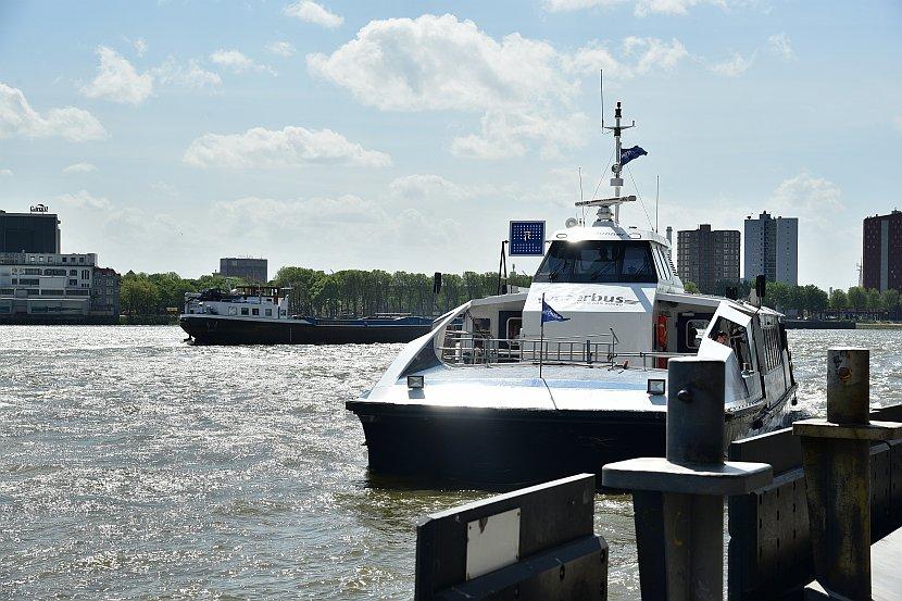 荷蘭-鹿特丹-Water Bus