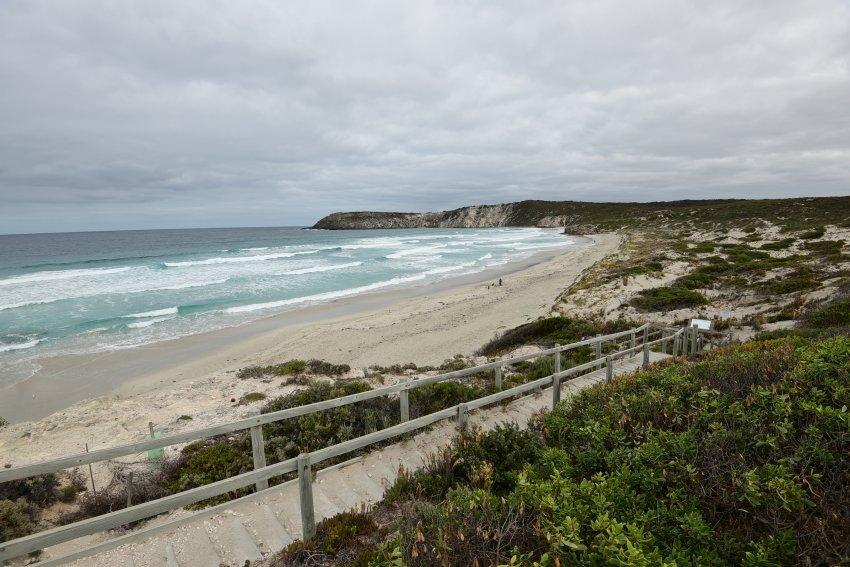 澳洲-袋鼠島-Pennington Bay