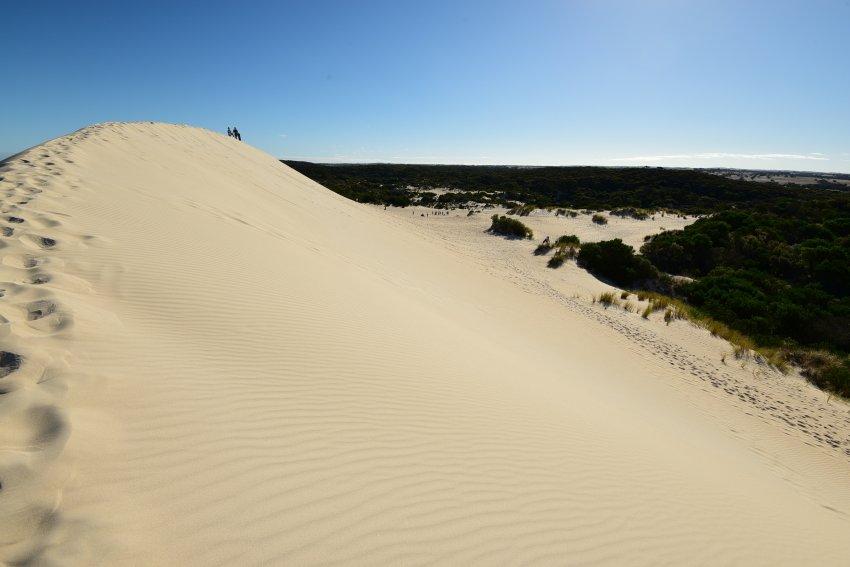 澳洲-袋鼠島-Little Sahara