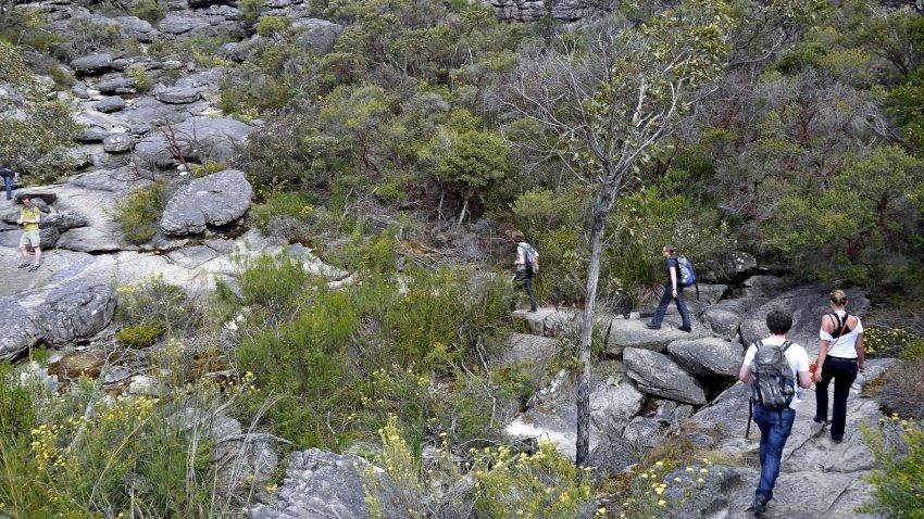 澳洲-格蘭坪國家公園