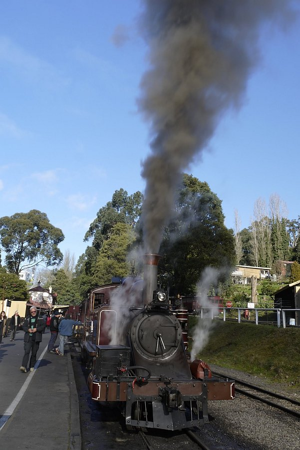 澳洲-墨爾本-Puffing Billy普芬比利蒸汽火車