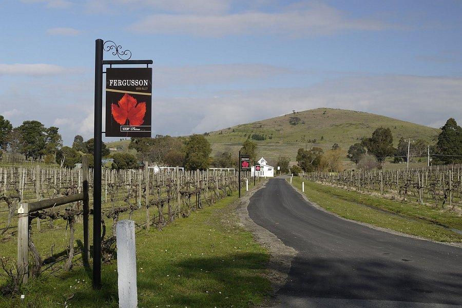 澳洲-墨爾本-亞拉河谷酒莊