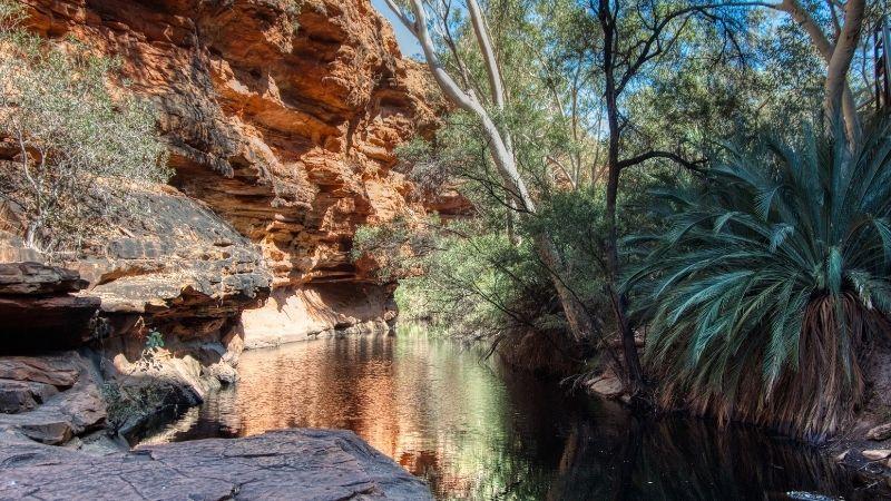 澳洲-國王峽谷-伊甸園