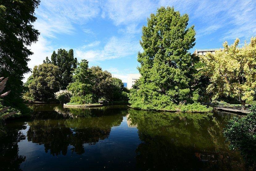 澳洲-南澳洲-阿德雷德-植物園(Botanic Gardens)