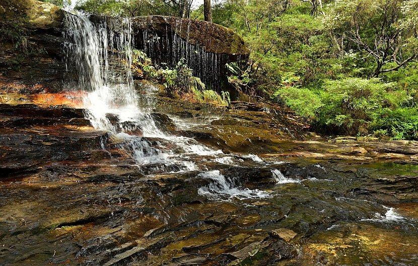 澳洲-新南威爾斯-藍山國家公園- Weeping Rock