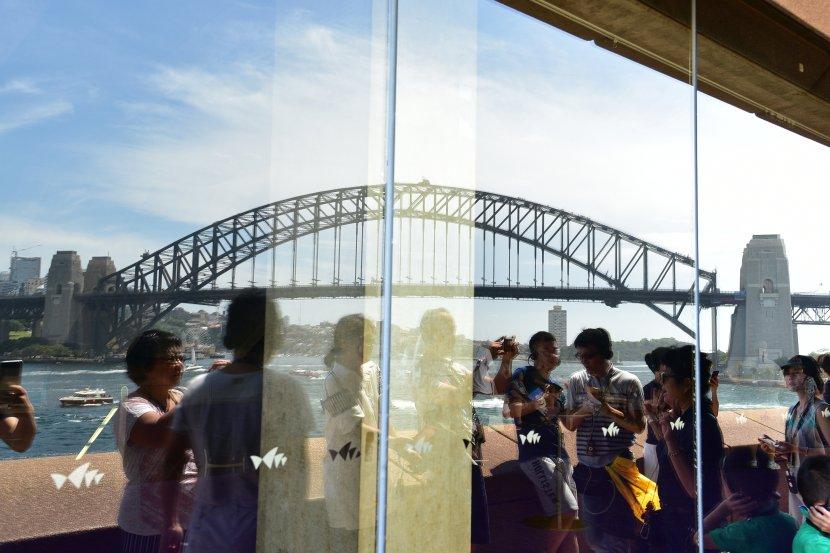 澳洲-雪梨-雪梨歌劇院導覽