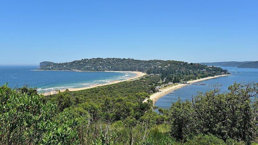 澳洲-新南威爾斯-棕櫚海灘