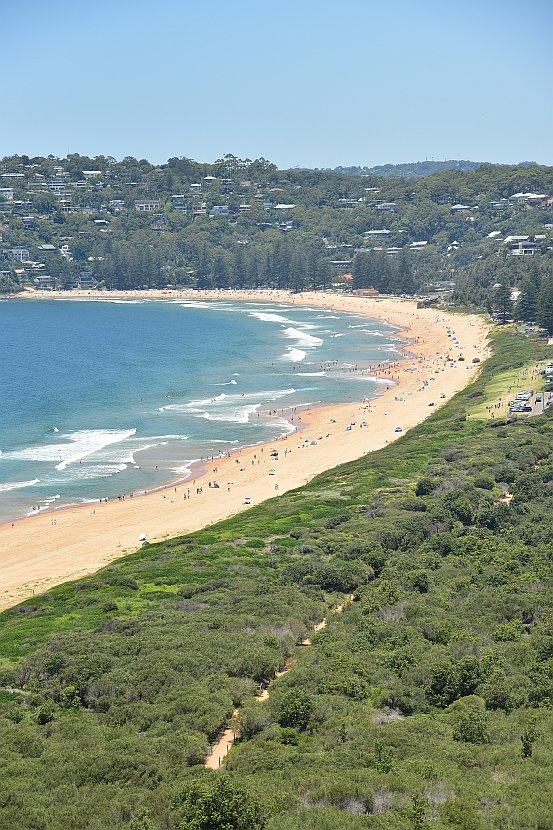 澳洲-雪梨郊區-棕櫚海灘