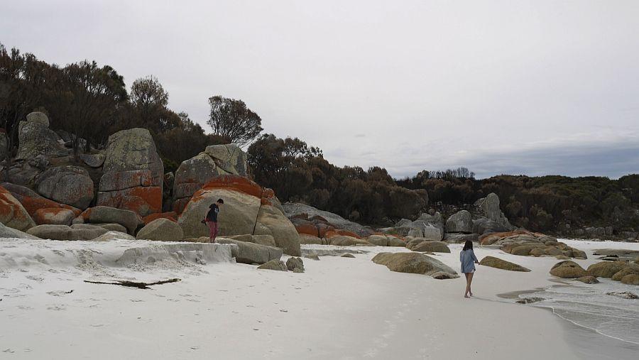 澳洲-塔斯馬尼亞-Bay of Fires火焰灣
