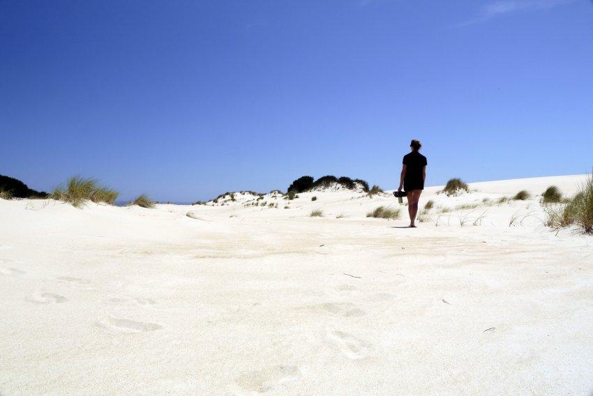 澳洲-塔斯馬尼亞-Henty Dunes