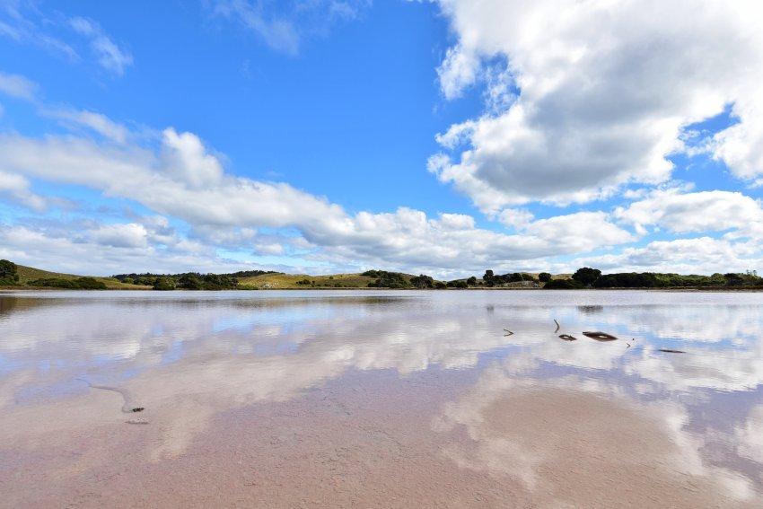 澳洲-西澳-羅特尼斯島-粉紅湖
