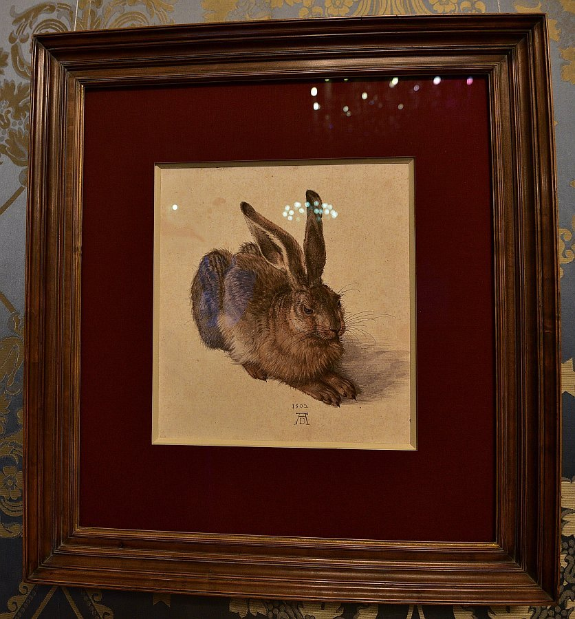 奧地利-維也納-阿爾貝蒂娜博物館-杜勒野兔