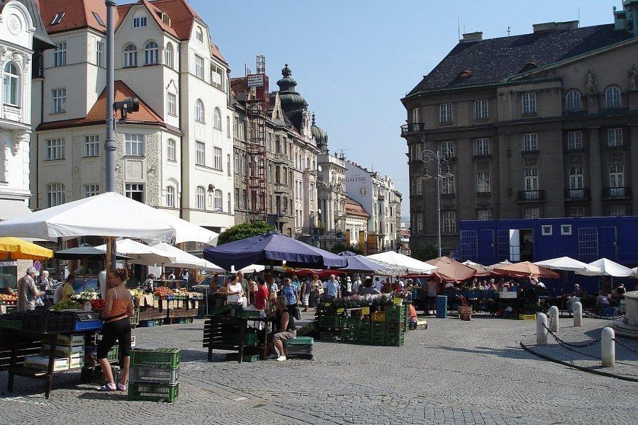 捷克-布爾諾-包心菜廣場