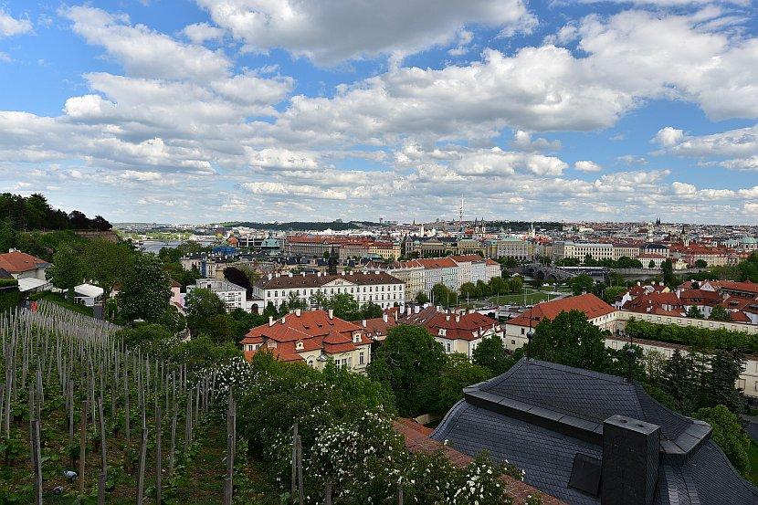 捷克-布拉格-布拉格城堡-聖瓦茨拉夫葡萄園