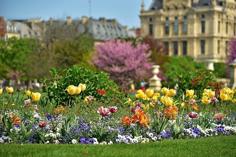 法國-巴黎-杜樂麗花園