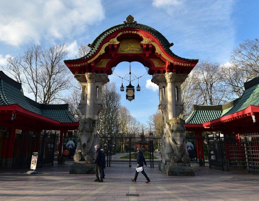 德國-柏林-柏林動物園象門