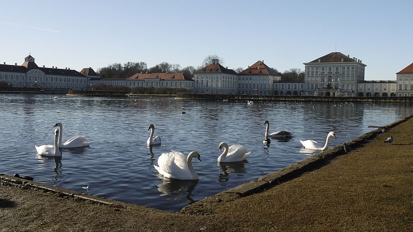 德國-慕尼黑-寧芬堡宮-天鵝