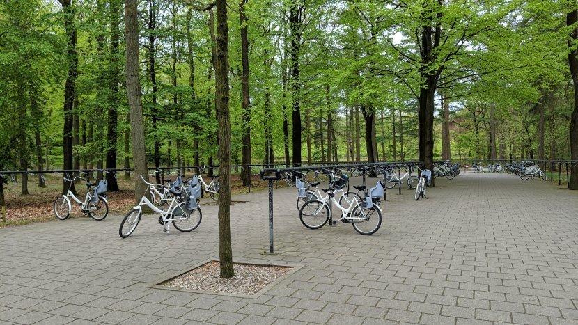 荷蘭-高費呂韋國家公園/梵谷森林-白色自行車